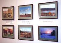 В Тамбове открылась выставка картин местного автора