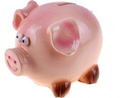 В Тамбовской области в развитие свиноводства инвестируют более 12 млрд рублей