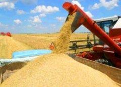 Тамбовские аграрии собрали первый миллион тонн зерна урожая 2014 года