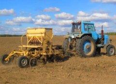 В Тамбовской области выполнено более 50% работ по севу озимых зерновых