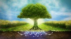 Тамбовская область вновь стала лидером экологического рейтинга