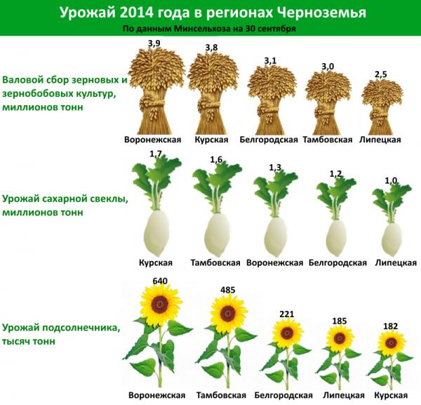 Урожай 2014 года в регионах Черноземья