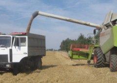 Тамбовские аграрии заканчивают уборочные работы