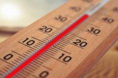 Аномально жаркая погода установится в Тамбовской области