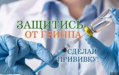 На избирательных участках можно будет сделать прививку от гриппа