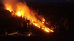Лесные пожары охватили Тамбовскую область