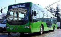 Горожане и депутаты просят сохранить тамбовский троллейбус