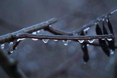 Тамбовскую область накроет ледяной дождь