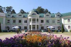 За срыв сроков реконструкции дома-интерната подрядчик заплатит 700 тыс. рублей