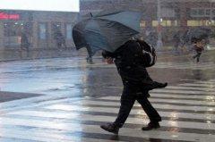 В Тамбовской области ожидается крепкий ветер