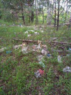 Жители Рассказовского района: «Все вокруг загажено пластиком»