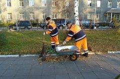 На тамбовчан могут возложить уборку городских территорий